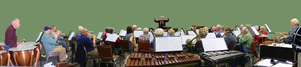 Panorama 1. Symphonic & Concert Bands 12-14-15 web